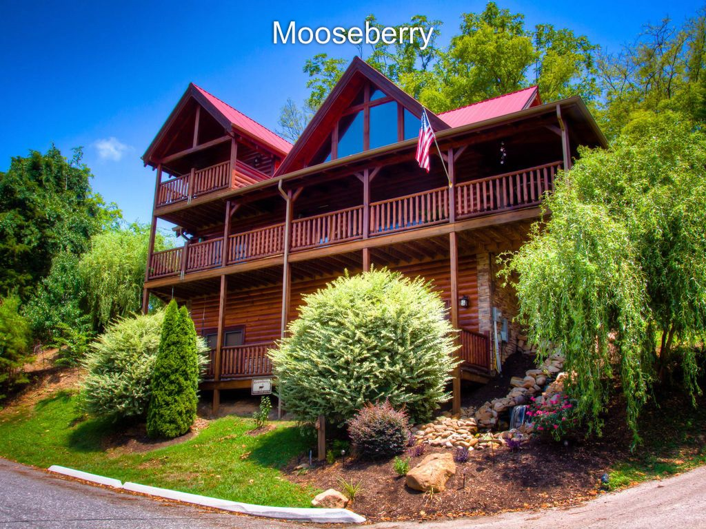 Welcome to Mooseberry