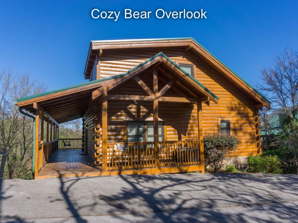 Welcome to Cozy Bear Overlook