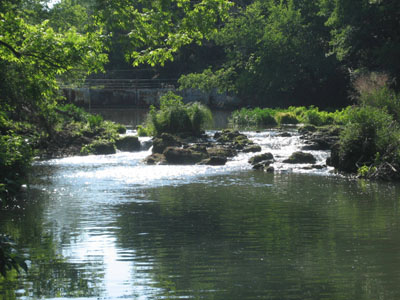 Many opportunities to fish, explore, swim, or simply gaze up and down Sulfur Creek
