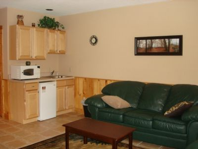 Lower Level Living Area w/Kitchenette